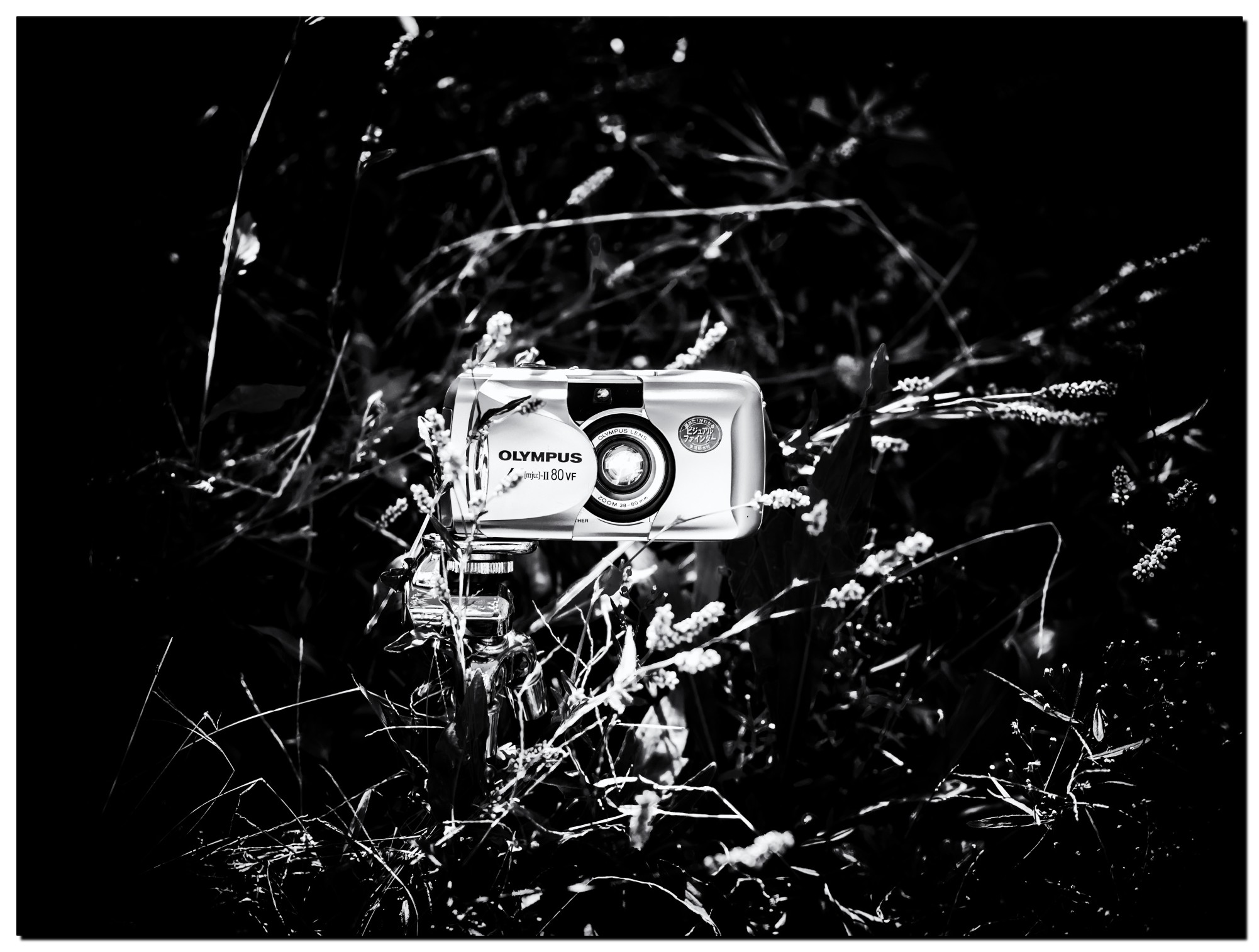 02LR-PF229169-Edit-3.jpg