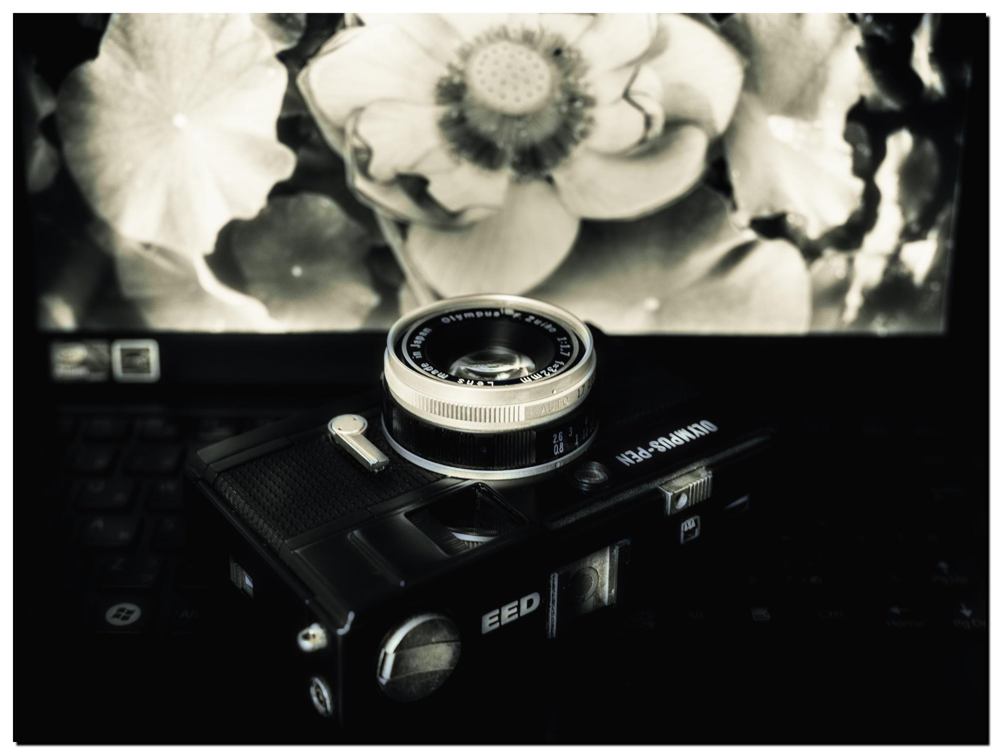 LR-P7170088-Edit-5.jpg