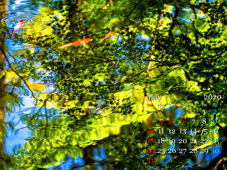 LR-PF304100-Edit-2.jpg