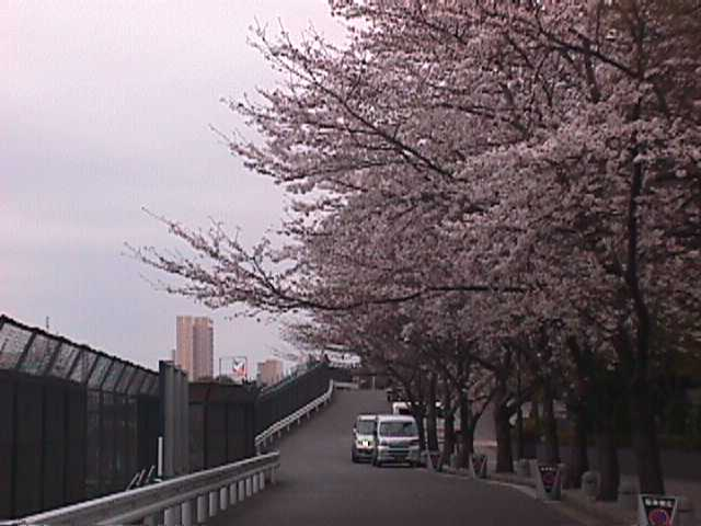 御殿山MVC-051S