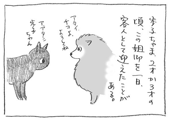 1-0122.jpg