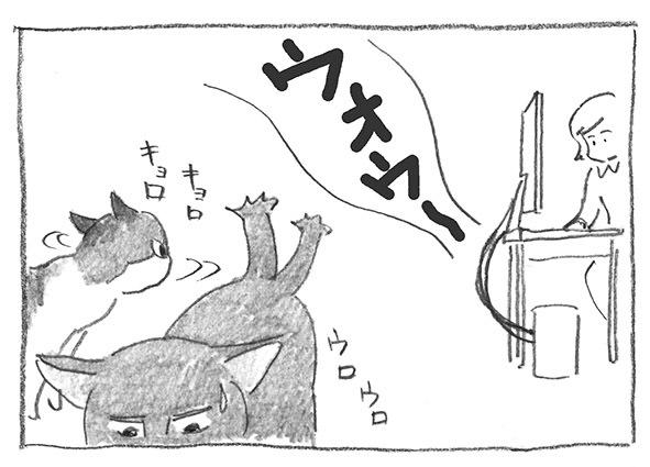 6-0627ウロキョロ