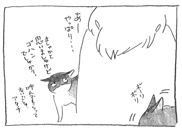 8-0628ガブ子白石