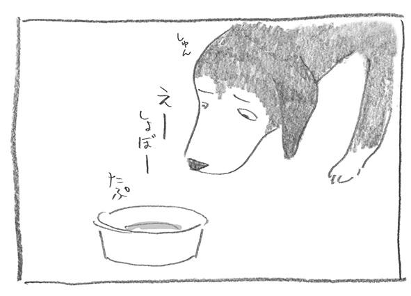 9-0706しょぼ