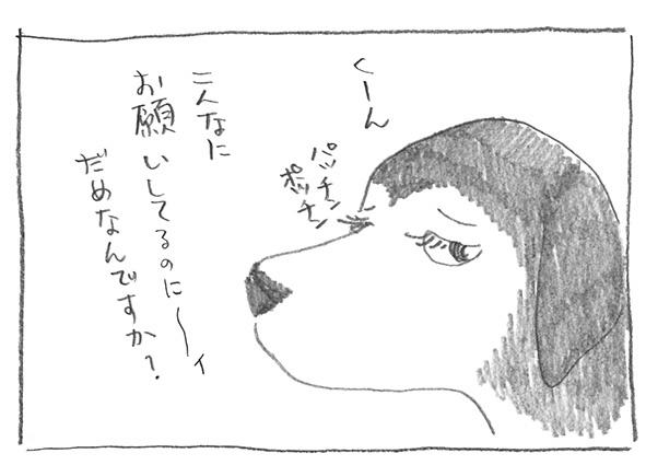 12-0706く〜ん