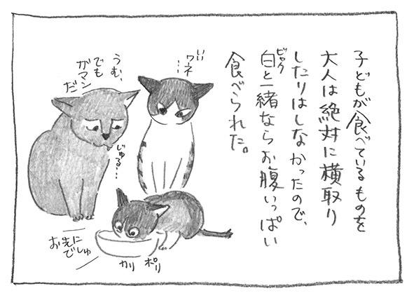 4-0714お先でしゅ