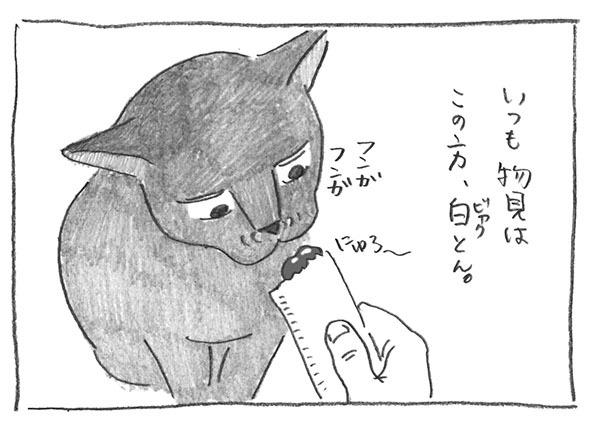 5-0728物見