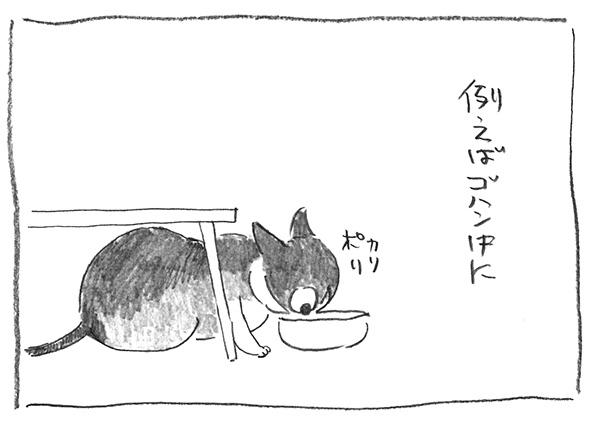3-0816ご飯中に