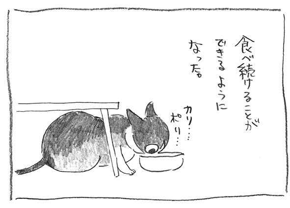 7-0816食べ続ける