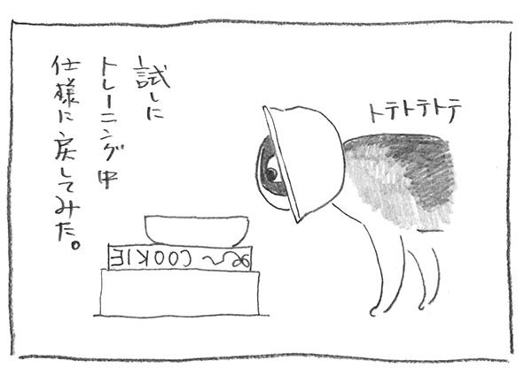 5-0905仕様