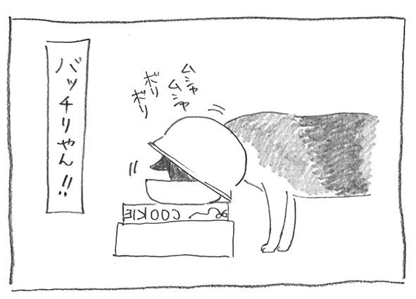 7-0905バッチリ