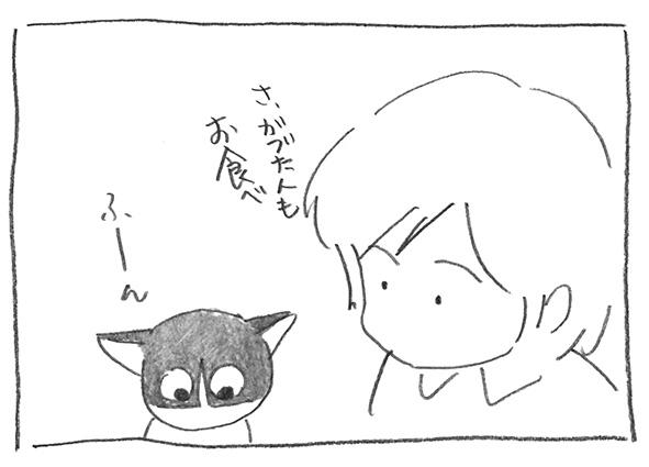 9-0912お食べ