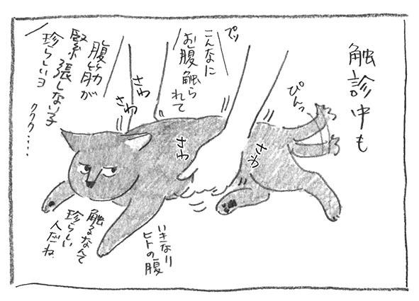 4-0913触診平気
