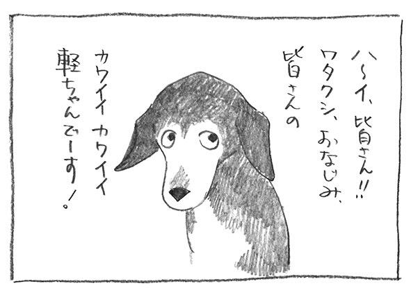 1-0914おなじみ