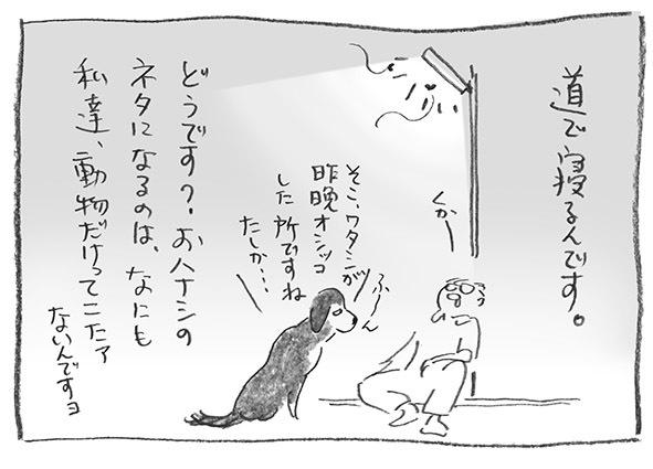 4-0914くかー