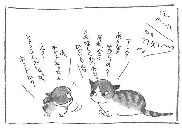 5-0920あれダメ