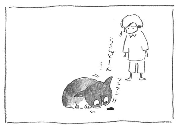 11-0920フンフン