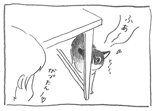 3-0928ふあ〜