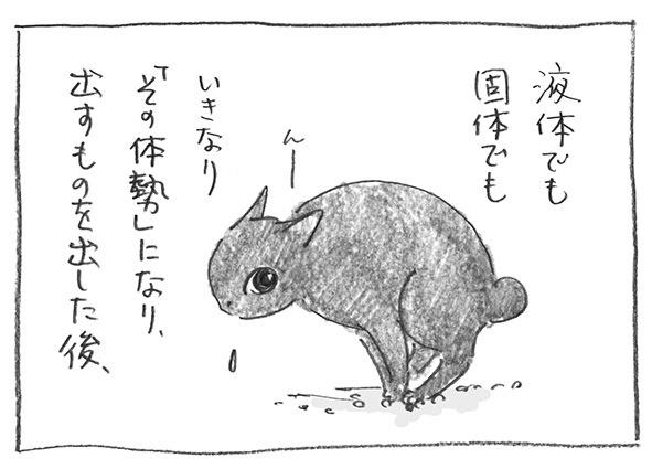 2-1017いきなり