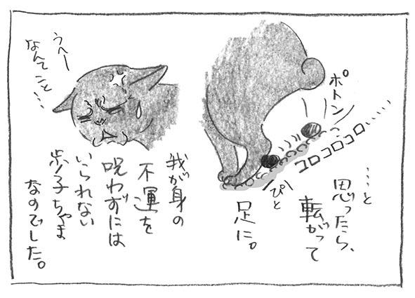 5-1019呪う