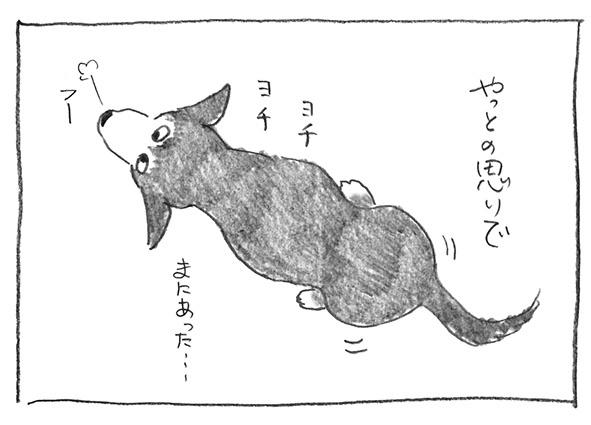 5-1020ヨチヨチ