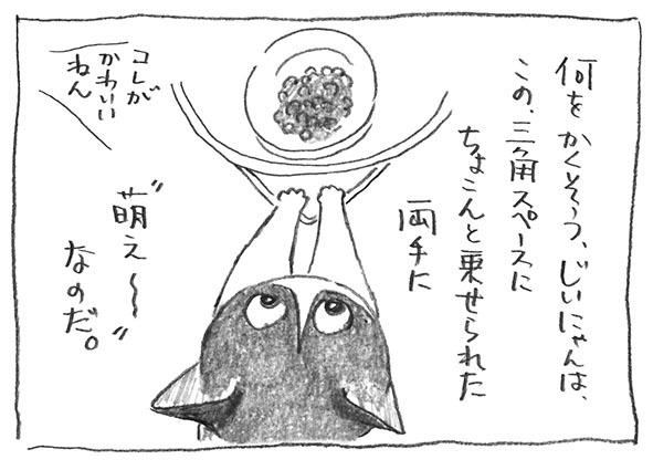 5-1021萌え