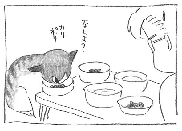 9-1022李子