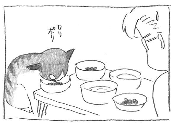 11-1022食べ続ける