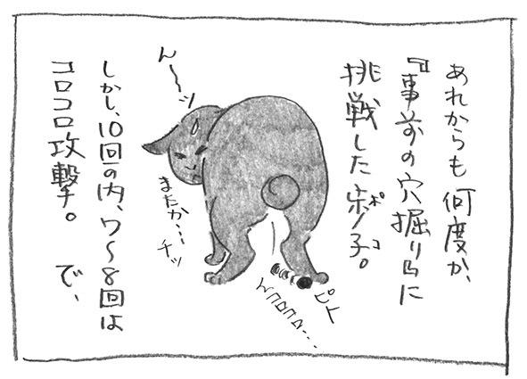2-1023きばる