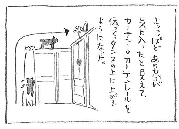 3-1030カーテン
