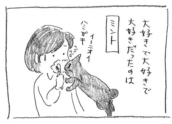 4-1122ミント