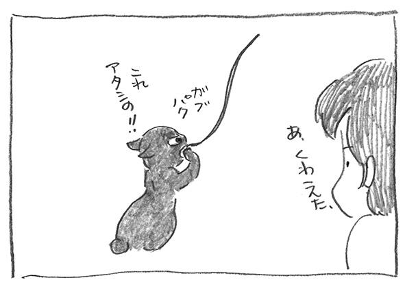 7-1125どっか行くな