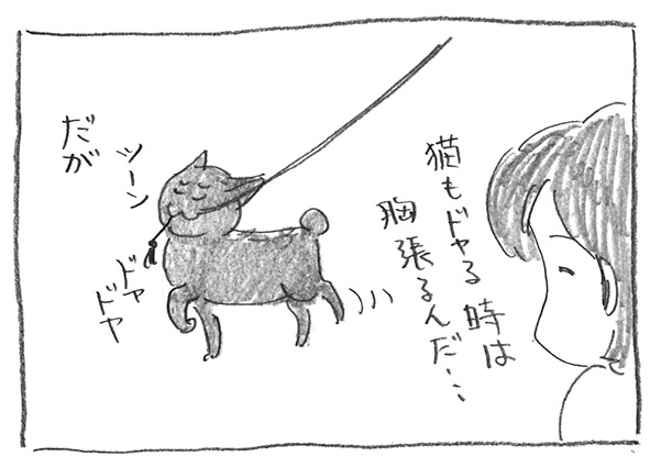 9-1125ドヤドヤ