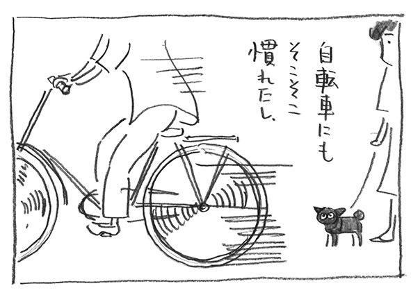 2-1128自転車平気