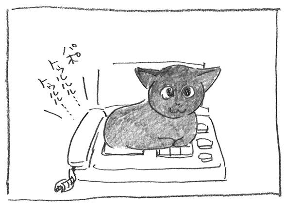 5-1129繋がる
