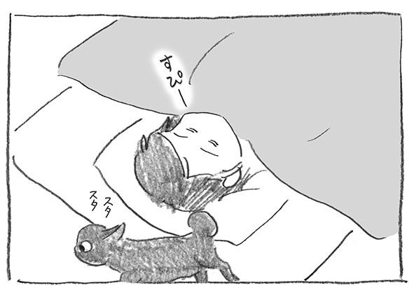6-1212スタスタ
