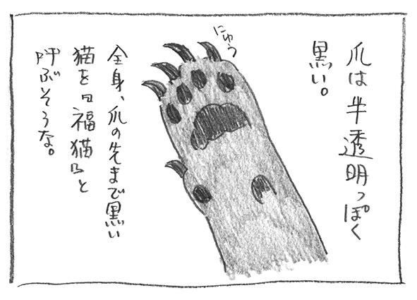 4-1224爪黒