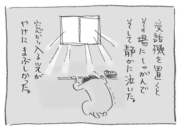 8-1231まぶしい