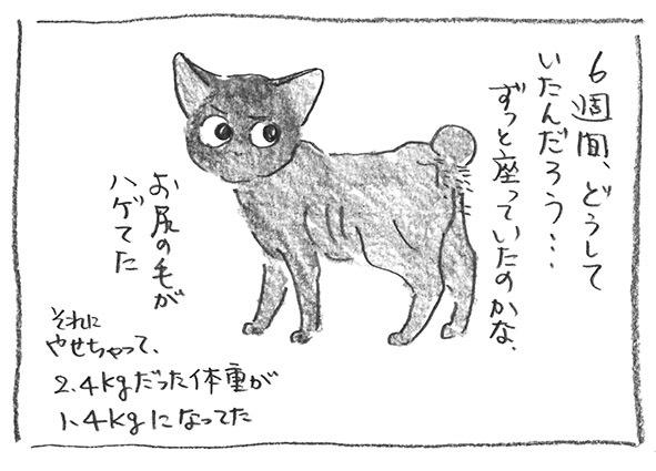 4-0101お尻ハゲ