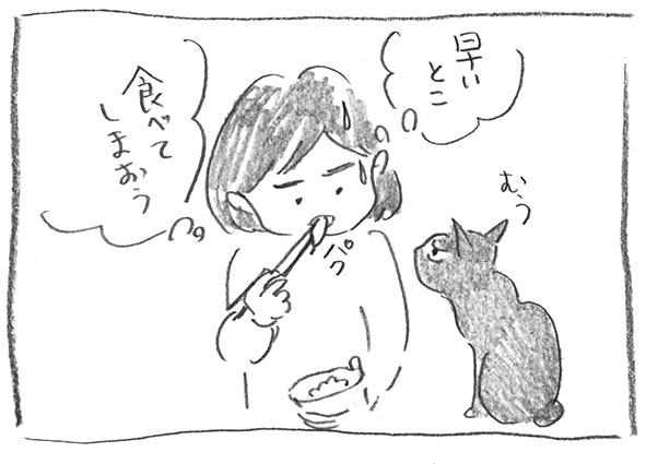 5-0103食べちゃえ