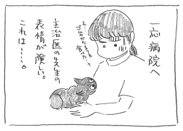 2-0106主治医
