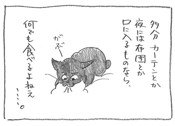 5-0107布団かぷ