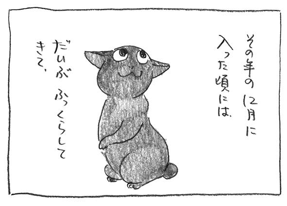 1-0109ふっくら