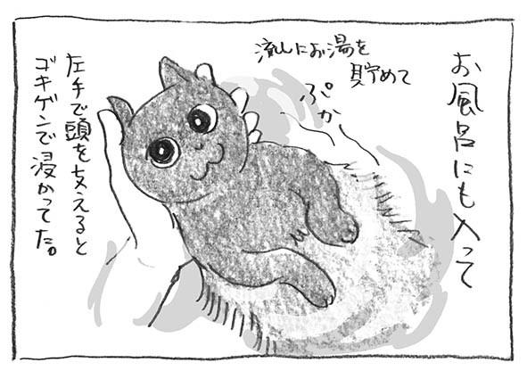 3-0109ぷかー