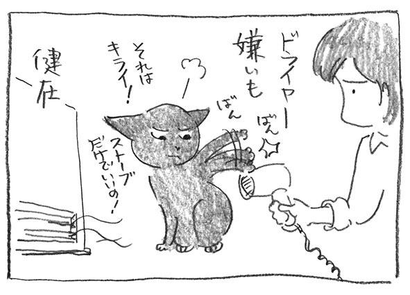 4-0109ドライヤ嫌い