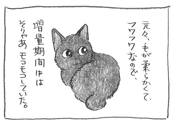 2-0113モコモコ
