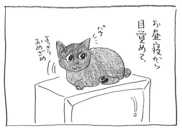 2-0114目覚め