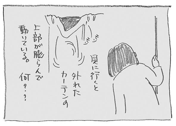6-0116ふくらみ