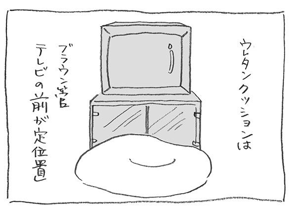 1-0118クッション