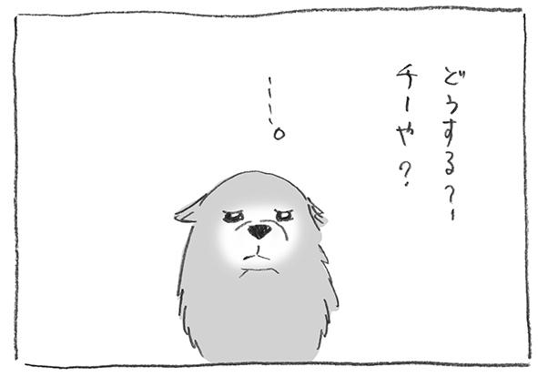 2-0124どうする
